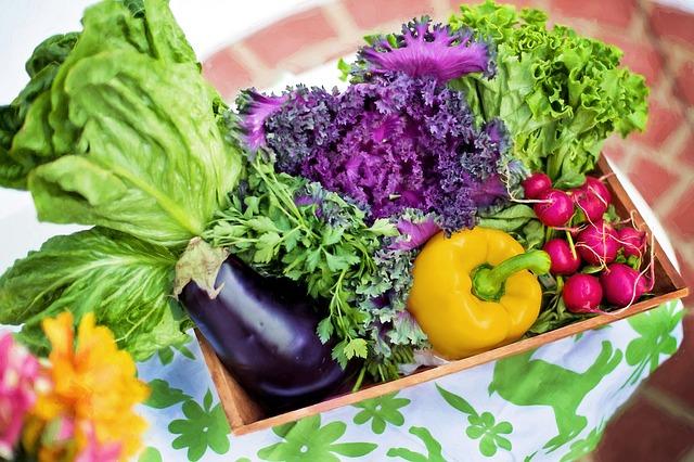 Organic vs Conventional Vegetables The Unending debate