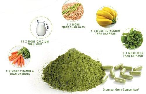 Moringa Leaves Powder Benefits