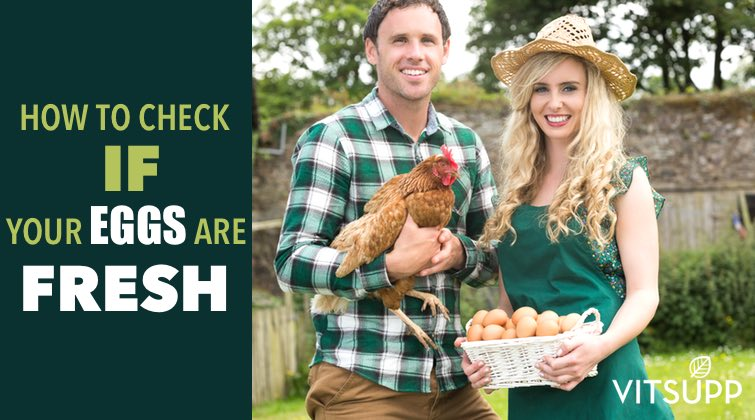 HOW TO CHECK IF EGGS ARE FRESH WITH FRESH EGG TEST