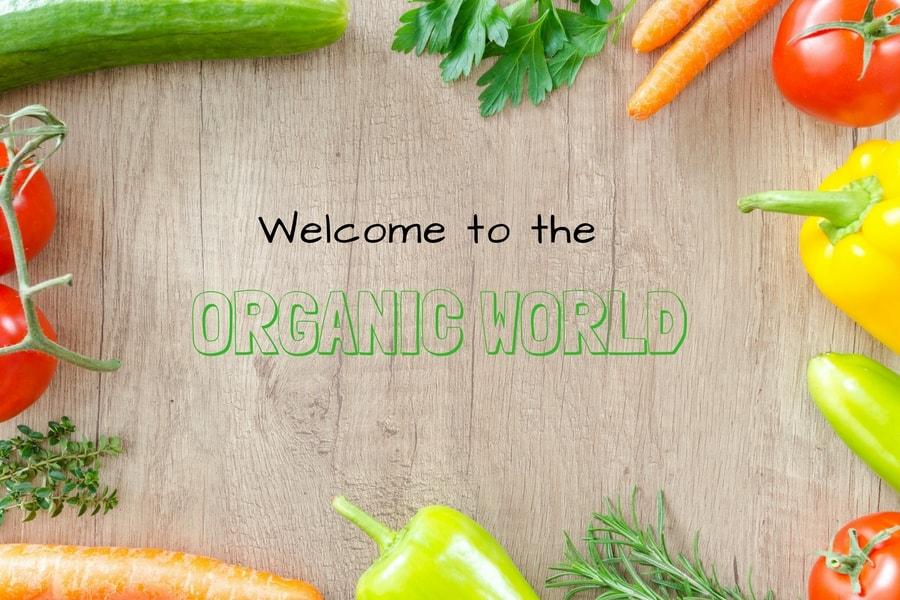 Buy Organic Food online on vitsupp store