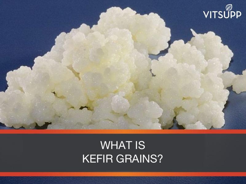 WHAT IS KEFIR GRAINS INDIA